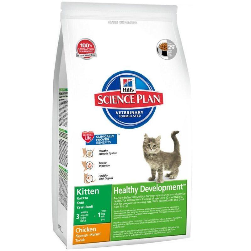 Рейтинг лучших кормов для котят разного класса: сухие корма и паучи - какой лучше выбрать